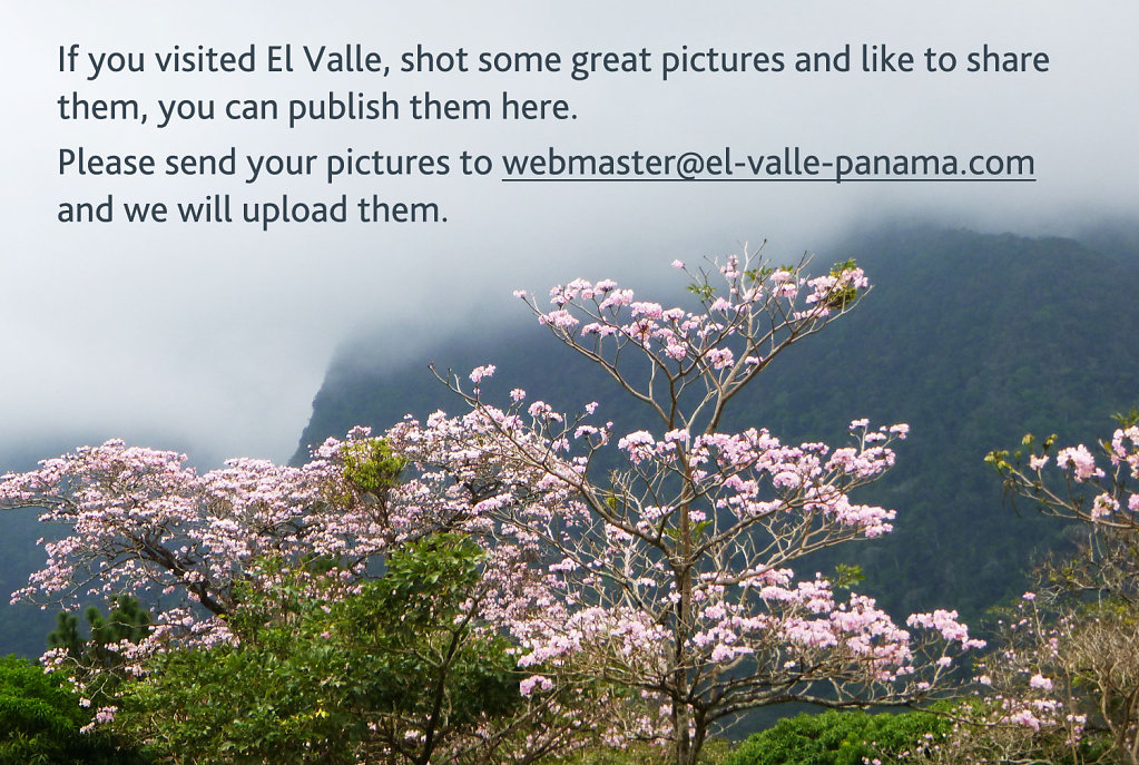 "Please send your pictures to <a href=""mailto:webmaster@el-valle-panama.com"">webmaster@el-valle-panama.com</a>"